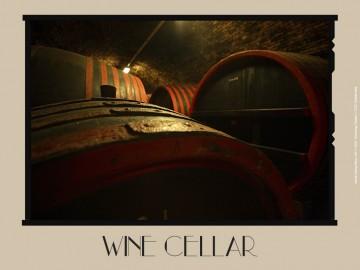 borok borospince wine cellar