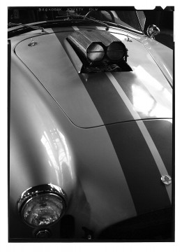 shelby cobra muscle cars 2