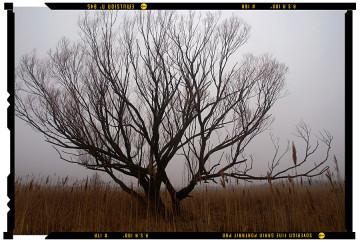 túrázás pilisben fotósvilág 2