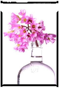 tavaszi virágok bőrlevél 5