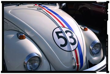 beetle volkswagen 3